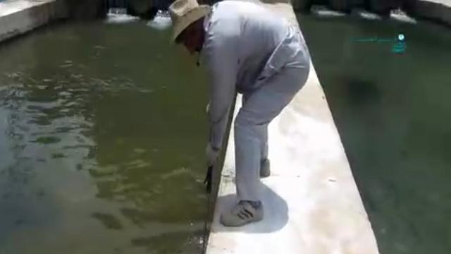 شستشوی استخر پرورش ماهی با واترجت  - Wash the fish farming ponds with water jet
